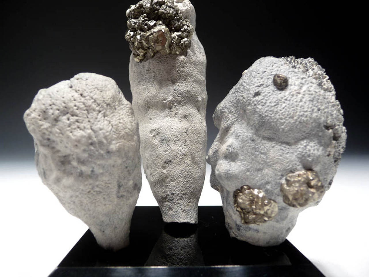 "SP006 - FOSSIL CRETACEOUS SPONGE ""REEF"" OF 3 CAMPANIAN-ERA FULLY INFLATED SEA SPONGES OF DIFFERENT SPECIES"
