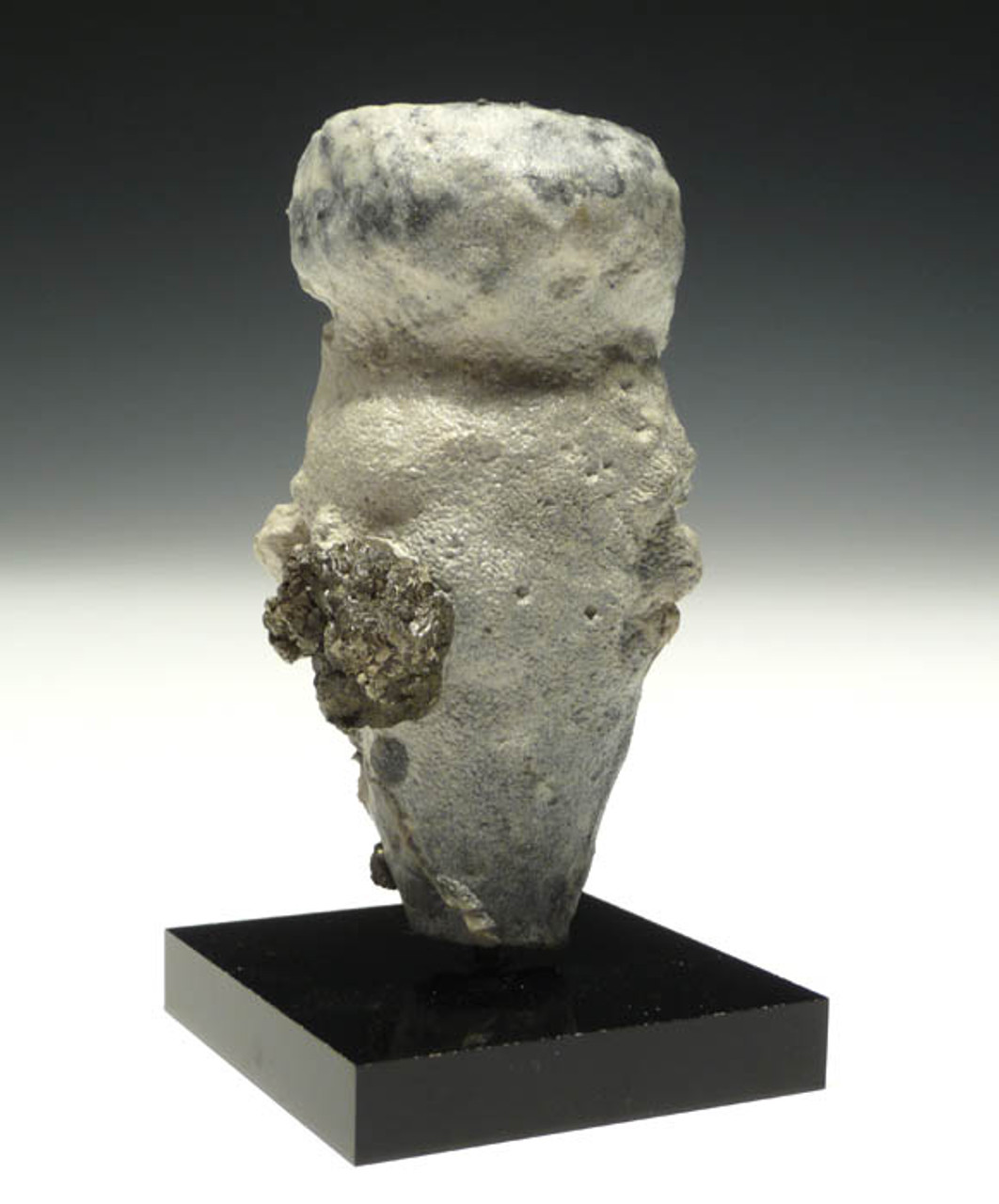 SP018 - CAMPANIAN-ERA THREE DIMENSIONALLY-PRESERVED CRETACEOUS SPONGE WITH DELICATE INTACT ANATOMY