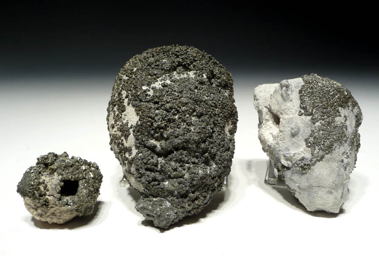 SP013 - SET OF 3 FOSSIL CRETACEOUS SPONGES FOR STUDY IN LIFELIKE 3D FORM AND ENCRUSTED WITH GOLD PYRITE CRYSTALS