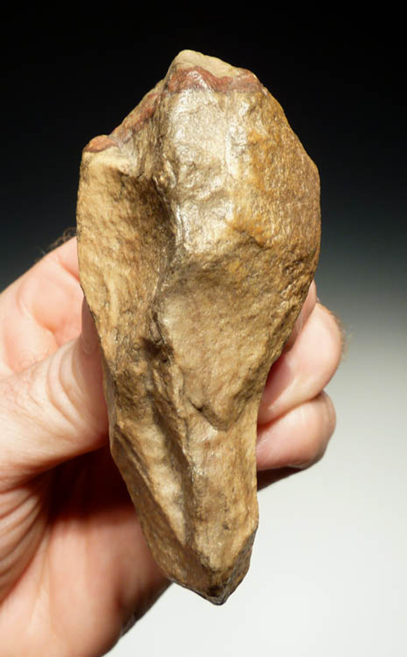 M236 - MOUSTERIAN COLORFUL HANDAXE FROM AFRICA WITH INGENIOUS FINGER GRIP DESIGN FOR RIGHT HAND USE