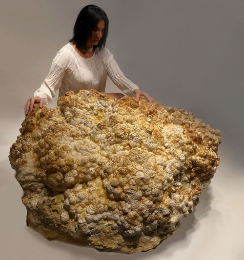 LARGEST KNOWN FOSSIL STROMATOLITE COLONY