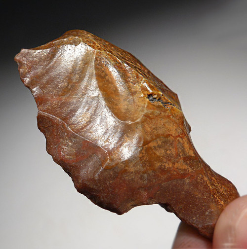 ATERIAN POINT - OLDEST KNOWN TANGED ARROWHEAD FROM PREHISTORIC AFRICA  *AT099