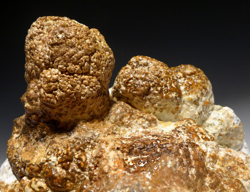 LARGE NATURAL FORM FOSSIL BACTERIA STROMATOLITE COLONY FROM AN ANCIENT OLIGOCENE LAKE  *STR578
