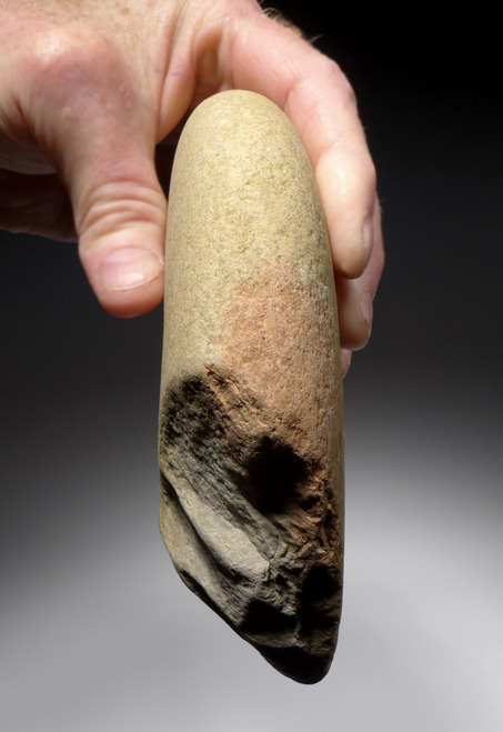 ENORMOUS BONE-SMASHING OLDOWAN PEBBLE CHOPPER AXE FROM EUROPE'S FIRST HUMANS  *PB151
