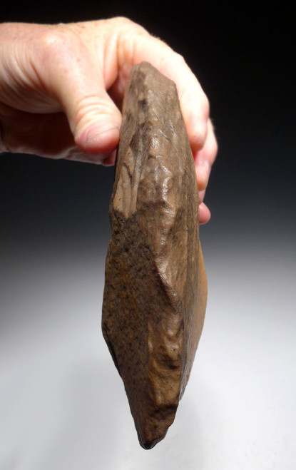 EXCEPTIONAL BONE-SMASHING CLEAVER HAND AXE OF THE ACHEULEAN MADE BY HOMO ERGASTER  *ACH422