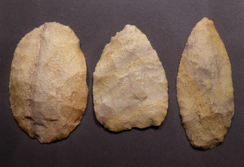 ASSOCIATED CACHE OF LARGE PRESTIGE FLAKE TOOLS FROM THE TENERIAN AFRICAN NEOLITHIC PEOPLE OF THE GREEN SAHARA *CAP311