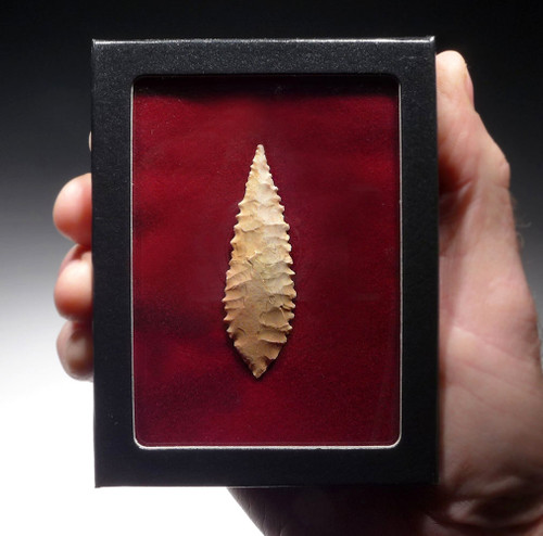 FINEST CAPSIAN AFRICAN NEOLITHIC SERRATED LARGE LEAF ARROWHEAD  *CAP323
