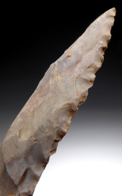 LARGE CAPSIAN AFRICAN NEOLITHIC UNIFACIAL WILLOWLEAF SERRATED SAW  *CAP332