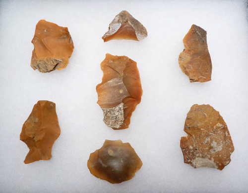 N103 - SET OF 7 FLINT EUROPEAN NEOLITHIC FLAKE TOOLS FROM THE FUNNEL BEAKER CULTURE OF EUROPE