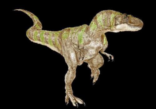 albertosaurus1.jpg