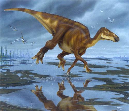 hadrosaur.jpg