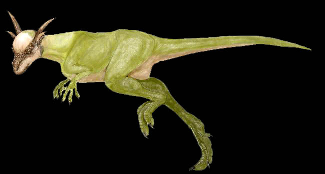 pachycephalosaur1.jpg