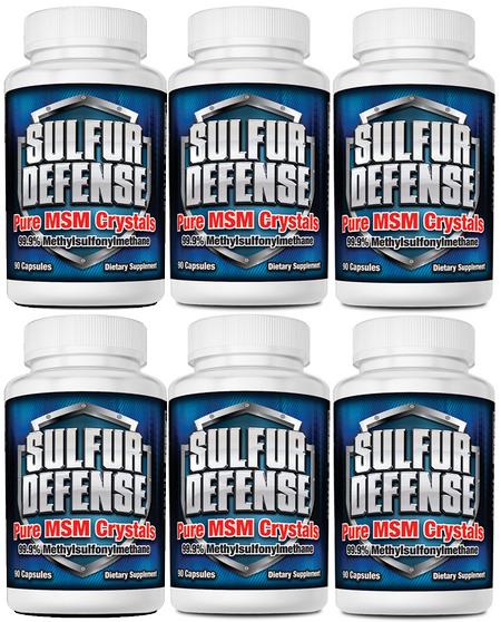 SULFUR DEFENSE MSM CAPS (6-PACK SPECIAL)