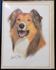 Blank Card with Envelope by Robert May - Collie (RGC23A)