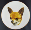 Best Of Breed 8.25in Gold Band Porcelain Plate - Chihuahua (Smooth Coat) (022 SC Chihuahua)