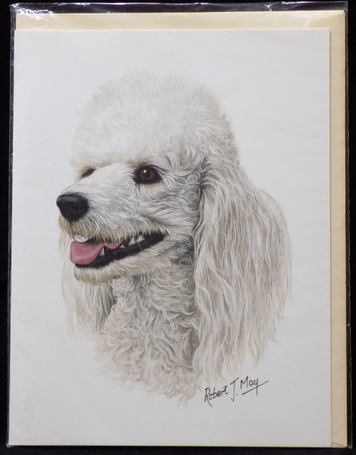 Blank Card with Envelope by Robert May - White Poodle (RGC01A)
