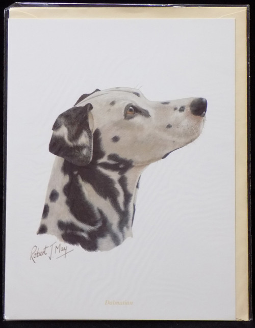 Blank Card with Envelope by Robert May - Dalmatian (RGC02)