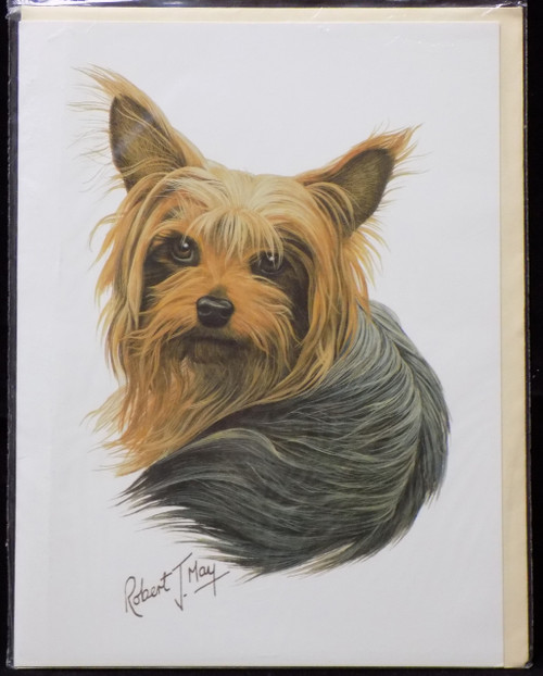 Blank Card with Envelope by Robert May - Yorkshire Terrier (Yorkie) (RGC04)