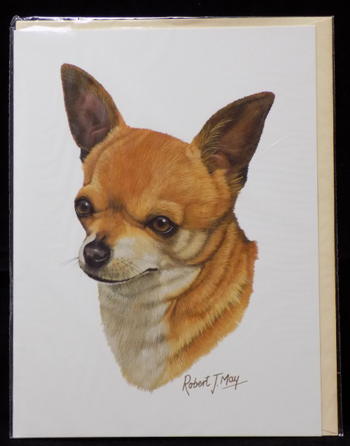 Blank Card with Envelope by Robert May - Chihuahua