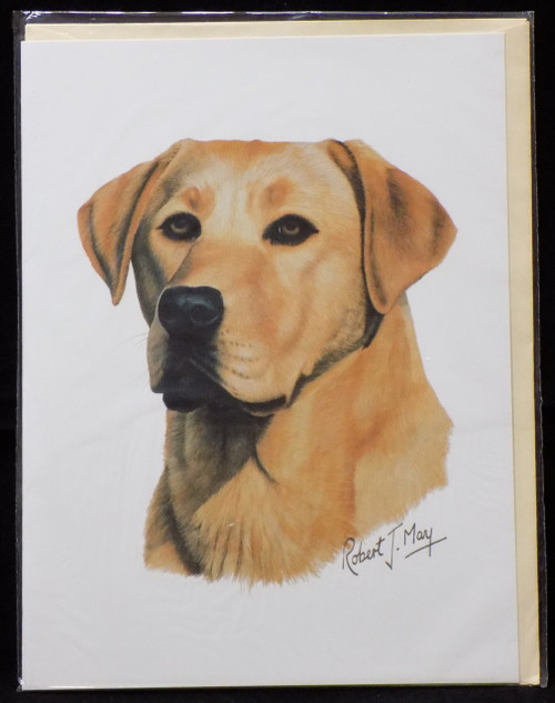 Blank Card with Envelope by Robert May - Yellow Labrador Retriever (Lab) (RGC24B)