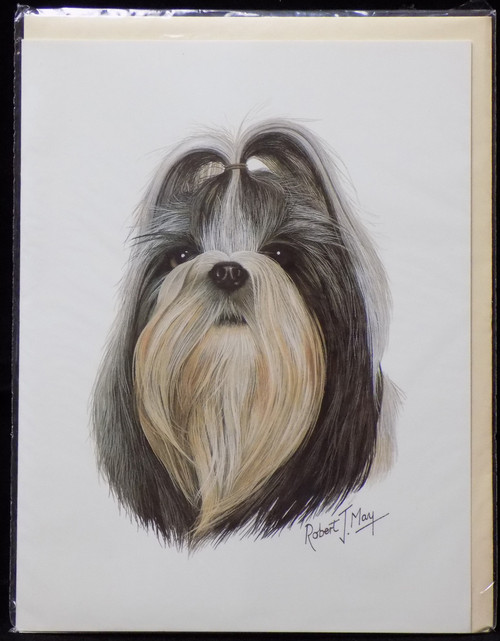 Blank Card with Envelope by Robert May - Shih Tzu (RGC26D)