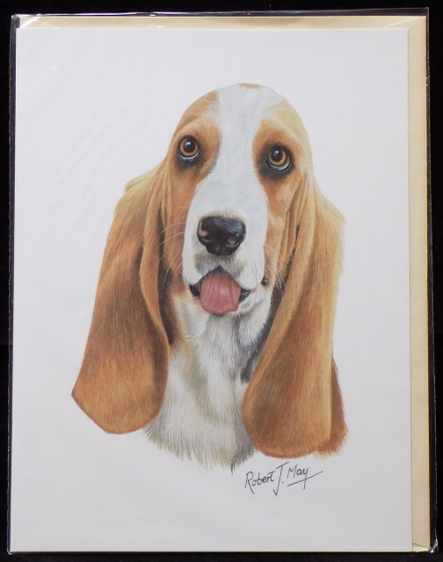 Blank Card with Envelope by Robert May - Basset Hound (RGC37)
