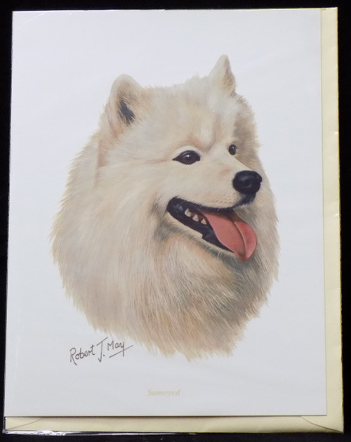 Blank Card with Envelope by Robert May - Samoyed (RGC39)