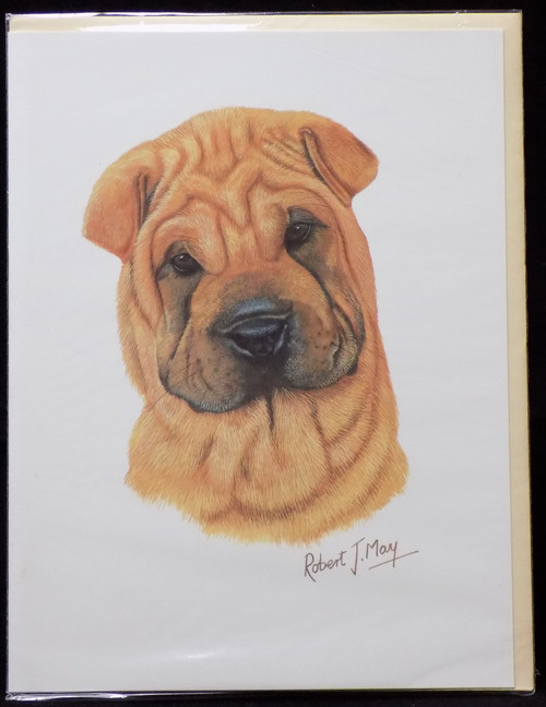 Blank Card with Envelope by Robert May - Chinese Shar Pei (RGC40A)