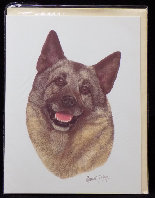 Blank Card with Envelope by Robert May - Norwegian Elkhound (RGC52)