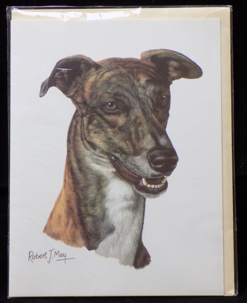 Blank Card with Envelope by Robert May - Greyhound (RGC54C)