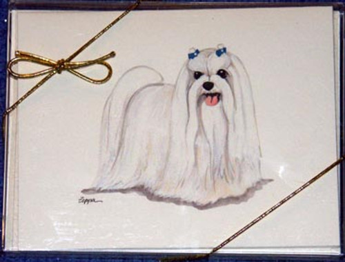 Fur Children Blank Note Cards - Maltese (NC040593)