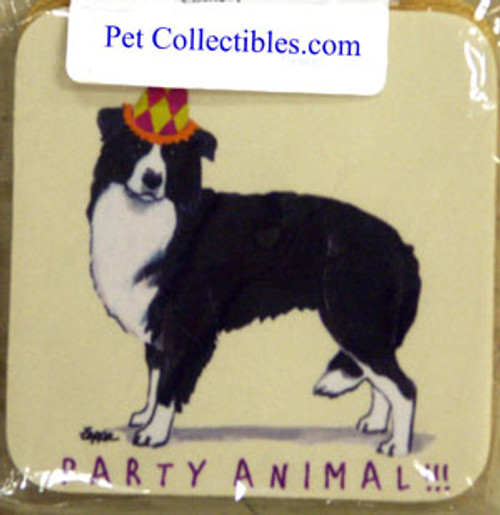 Fur Children Party Animal Coasters - Border Collie (PC040421)