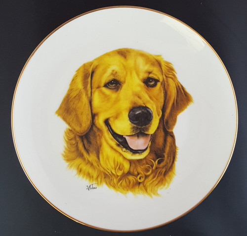 Best Of Breed 8.25in Gold Band Porcelain Plate - Golden Retriever (022 Golden)