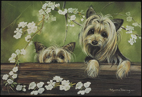 Fiddlers Elbow Yorkie On Porch Doormat (D104)