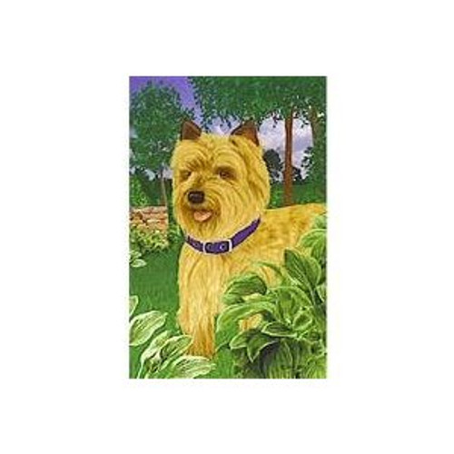 Gr8 Dog Cairn Terrier Garden Flag (5151)