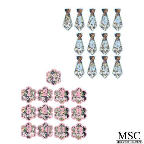 Main Street Collections Camo Baby Onesie Stickers - Girl (CSPP/7120 G) (Boys and Girls Sets Show are Sold Separately.  You will get one set for either a boy or girl)
