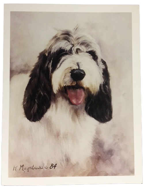 Ruth Maystead Note Cards - Petite Basset Griffon Vendeen (PBGV) Head Shot (PVG1 NC)