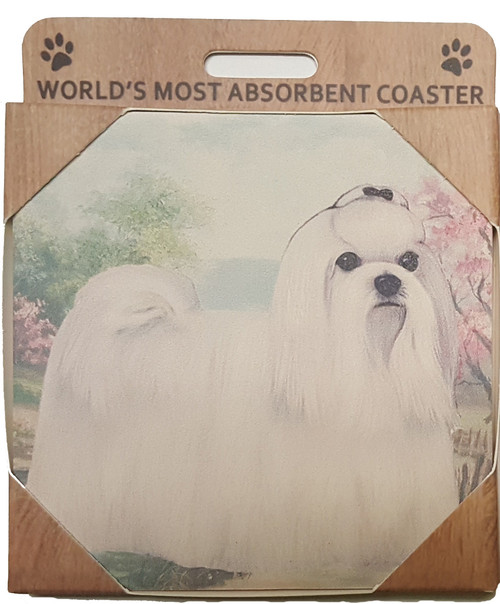E&S Imports Ceramic Pet Coasters - Maltese (250-24)