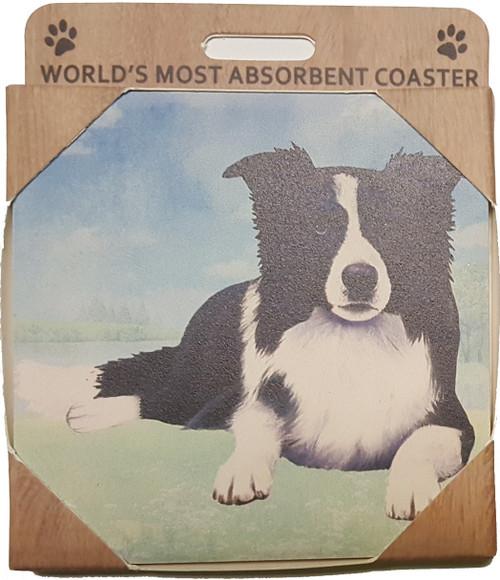 E&S Imports Ceramic Pet Coasters - Border Collie (250-5a)