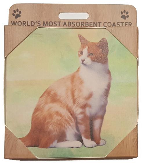 E&S Imports Ceramic Pet Coasters - Orange & White (251-10)
