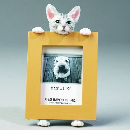 E&S Imports 2.5in x 3.5in Cat Picture Frame - Tabby-Silver (35316-9)