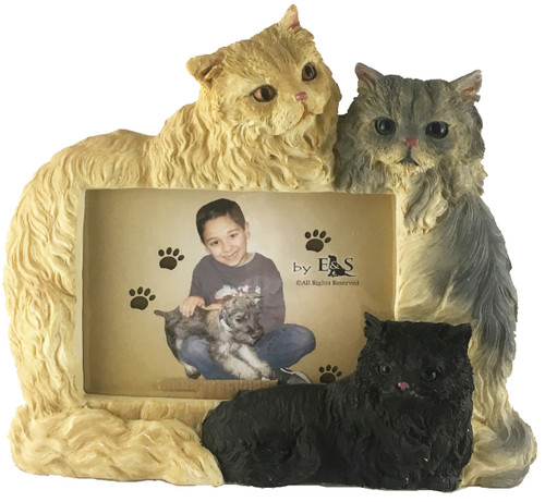 &S Imports Picture Frame - Persian Cat (35297-3B)