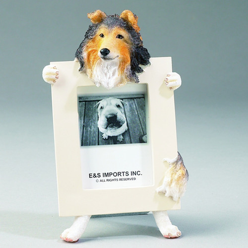 E&S Imports 2.5in x 3.5in Picture Frame - Shetland Sheepdog (Sheltie) (35315-37)