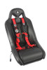 """Polaris RZR 4 Point 2"""" AutoStyle Harness (Driver Side) by Pro Armor"""