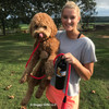 Sammy and his Coastal Pet Rope Slip Leash