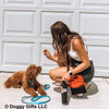 Kona is learning new tricks from his mom Coastal Pet treat and training bag