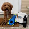 konatheminidood loves his Rascals Fetch Duck Dog Toy