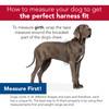 Helpful Sizing Information Coastal Pet dog harnesses
