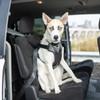 Bergan® Auto Harness (88200) size extra large dog