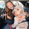 Mylo Began Auto Harness Coastal Pet Rope Leash